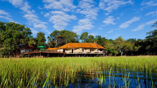 Refúgio Ecológico Caiman cria exclusiva experiências pantaneiras
